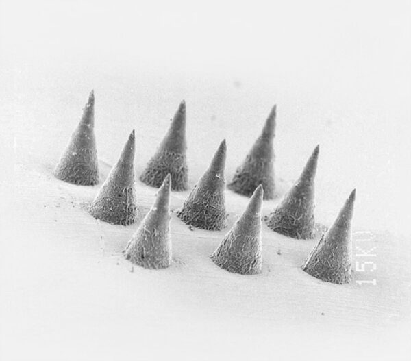 microneedle moulds